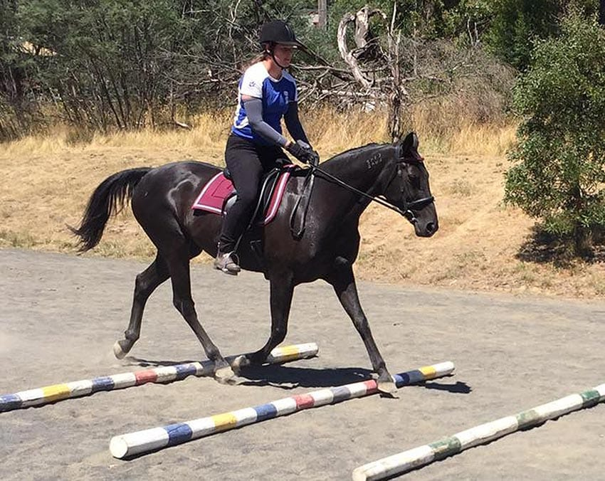 Standardbred Riding Group